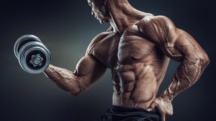 剣道に必要な筋肉と筋トレ方法】 | 剣道を心から楽しむための情報メディア Kenjoy!!(ケンジョイ)