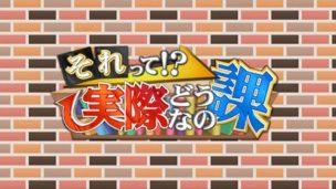 日本テレビ系列「それって!?実際どうなの課」