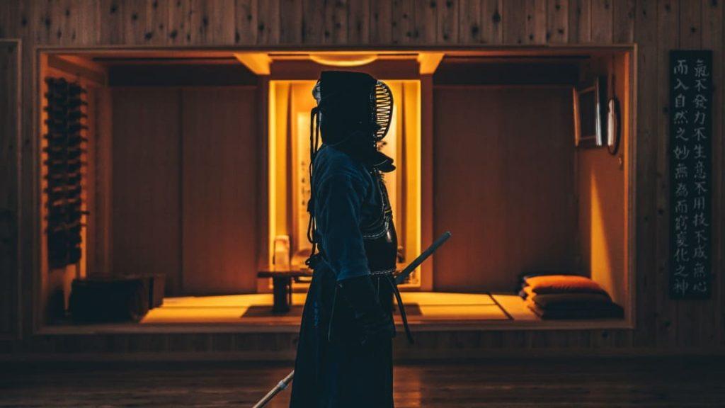 剣道,動画,ロジェデュブイ